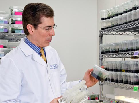 dr mcdaniel